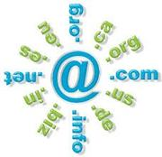 Domain Name & Web Hosting Service