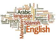 Norwegian Translator and Translation in Bilaspur